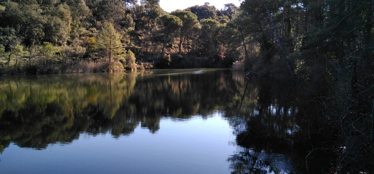 """Excursió a l'àrea del Parc de Sant Llorenç """"Les Rafardes"""""""